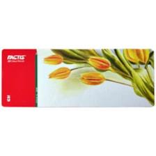 مداد رنگی 50 رنگ فکتیس کد f07112650 طرح گلهای لاله