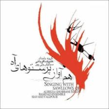آلبوم موسیقی هم آواز پرستوهای آه اثر علیرضا قربانی نشر نقطه تعریف