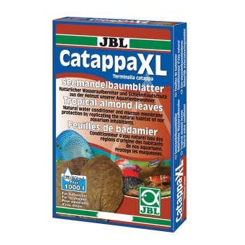 برگ درخت بادام هندی جی بی ال مدل catappa XL  بسته 10 عددی